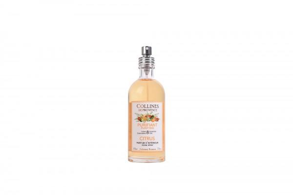 Purifiant Citrus Raumspray