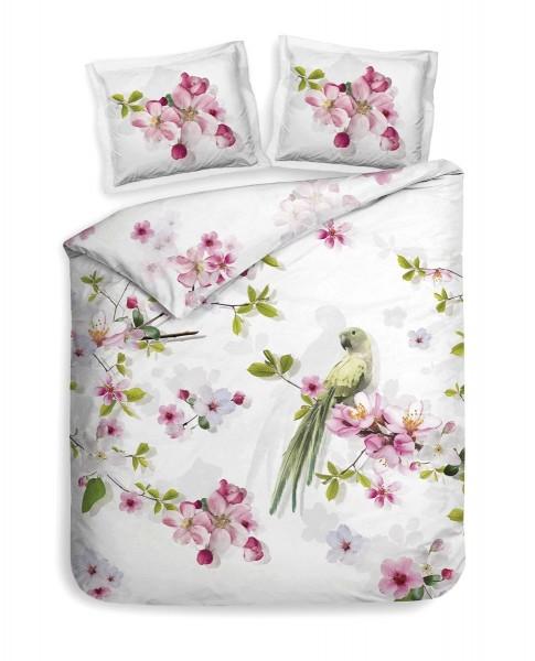 Betten Günther H&L Macy Fb. Blushing Pink_1_1